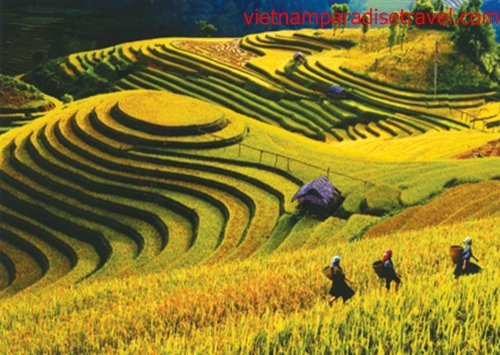Best places to visit in vietnam in september best of vietnam for Best warm places to visit in november