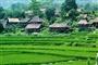 Cuc Phuong National Park - Mai Chau