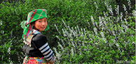 Northern Vietnam Exposure Tours