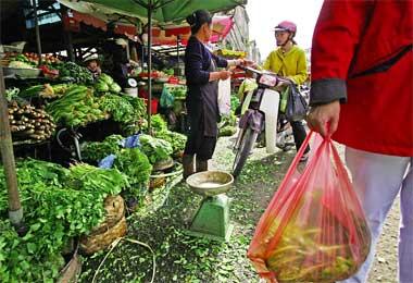 Vietnam wet market and grocery
