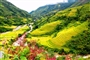 Hmong Villages To Taphin Sapa Tour Full Day