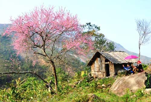 SaPa Lao Cai Vietnam