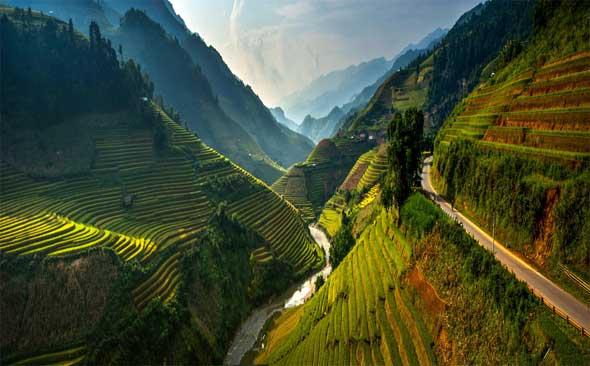 Resultado de imagen para vietnam nature
