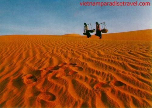 Sand Dunes -Mui Ne -Vietnam