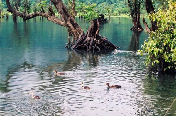 Noong Lake