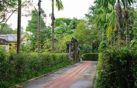 Phuoc Tich ancient village embodies Hue beauty