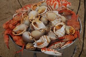 Best Food in Nha Trang