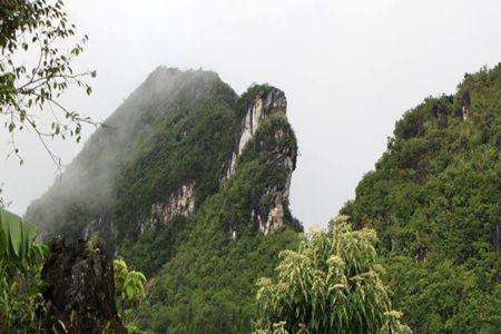 Ham Rong Mountain, Sapa, Vietnam