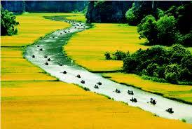 Hanoi - Ninh Binh daily tour