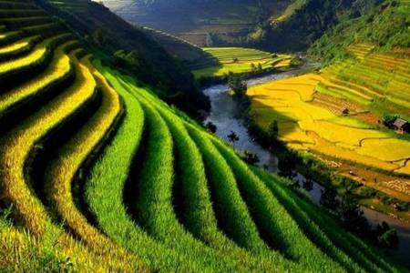 Muong Hoa Valley, Sapa Vietnam