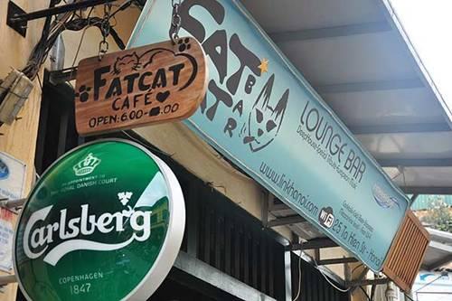 Fat Cat Bar 25 Ta Hien, Hoan Kiem, Hanoi