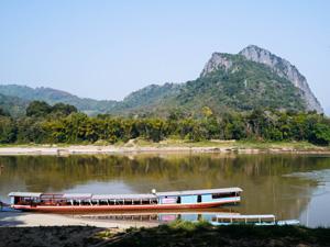 Shompoo Cruise