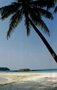 Ngapali Beach travel guides, Ngapali Beach tours in Myanmar