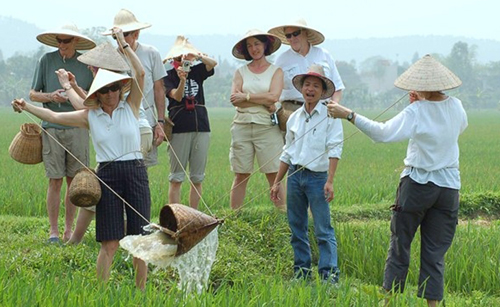 Foreigner visitors in Vietnam - Farming day