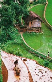 Yen Bai travel guides, Yen Bai tours in Vietnam