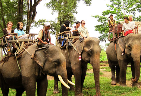 4 Days Explore The Highland of Southern Vietnam Tour