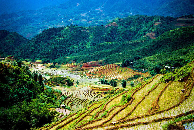 Essential Northern Vietnam Tour in 5 Days