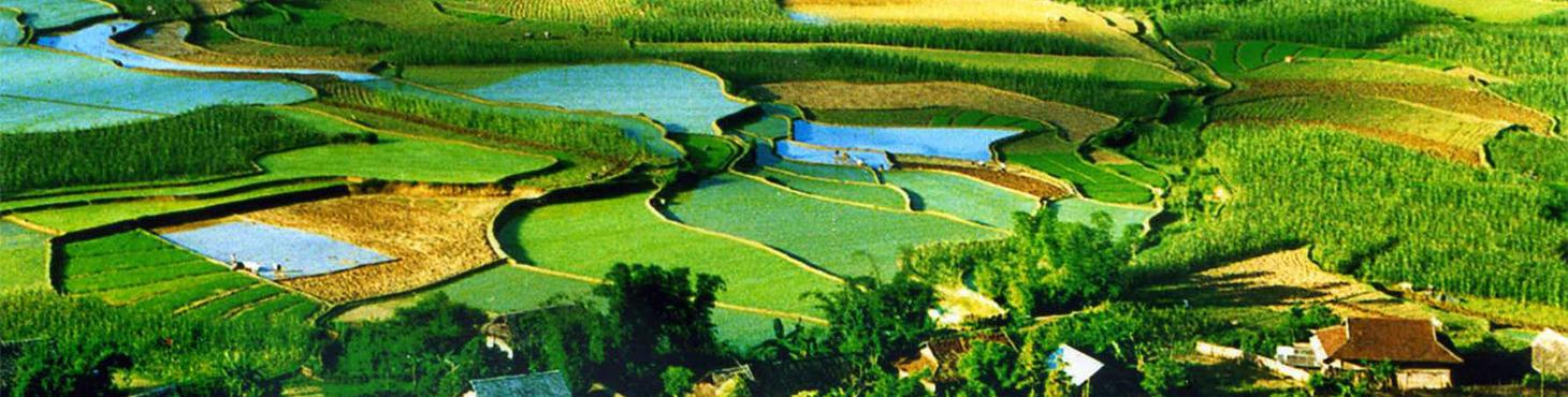 Idyllic Journey to Northern Vietnam in 6 days
