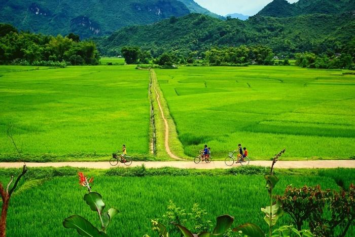 Mai Chau – Pu Luong 3 Days Trekking Tour