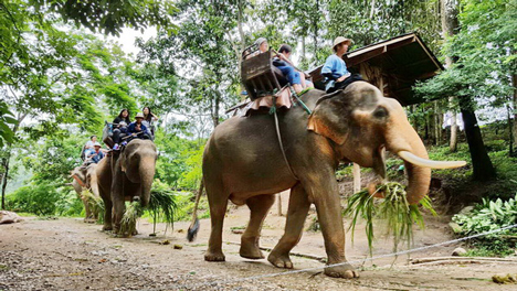 Highlights of Thailand in 9 Days