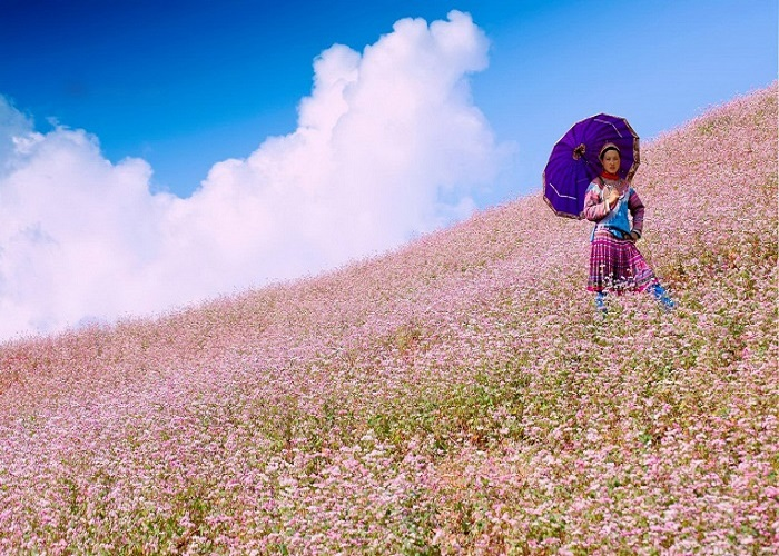 Ha Giang Extraordinary Panorama in 4 days