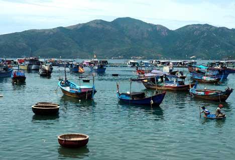 Nha Trang island tour full day