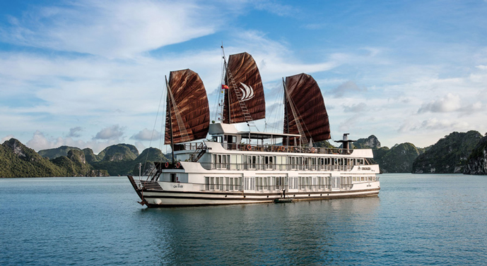 Pelican Cruise – 3 Days 2 Nights
