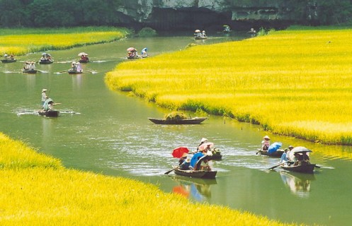 Red River Delta Excursion for Family in 7 Days