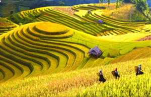 Northern Vietnam and Cambodia combined tour in 10 days