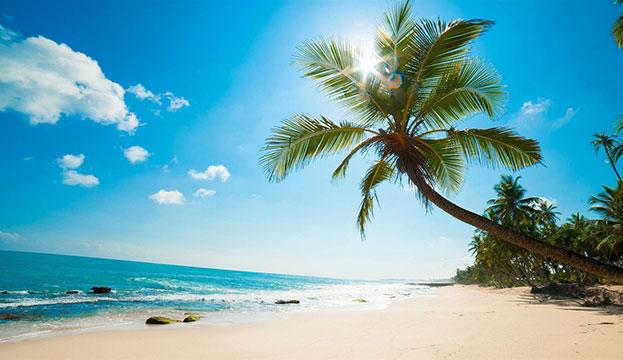Vietnam Family Beach Vacation in 11 Days